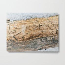 Wooden texture life Metal Print