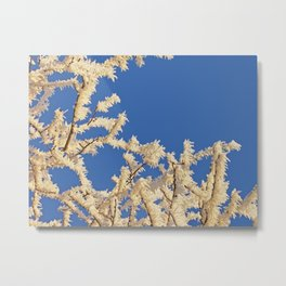 Frosted Trees Winter Metal Print