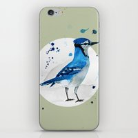 jay fleck iPhone & iPod Skins featuring Blue Jay by Condor
