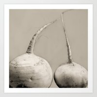 Turnips, Purple-top Art Print