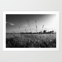 Countryside wheat field landscape - Nature in black and white Art Print