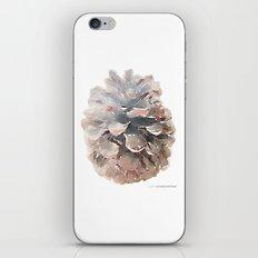 Pinecone Watercolor Art iPhone & iPod Skin