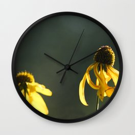 Sun Drenched Daisies Wall Clock
