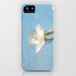 White and Blue Spring no. I iPhone Case