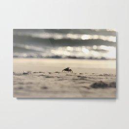 Friendly crab Metal Print