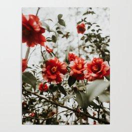 Spring Florals Poster