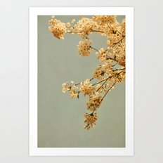 spring morning Art Print