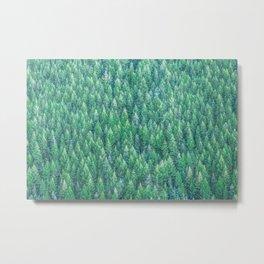 Green Pines Metal Print