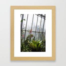 Edinburgh Flowers Framed Art Print