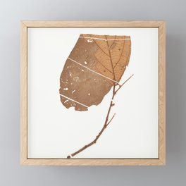 Leaf Theobroma subincanum Framed Mini Art Print