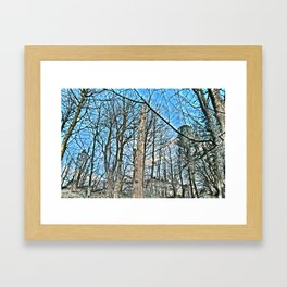 Pure Morning III Framed Art Print