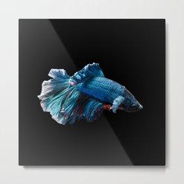 The blue fish Metal Print
