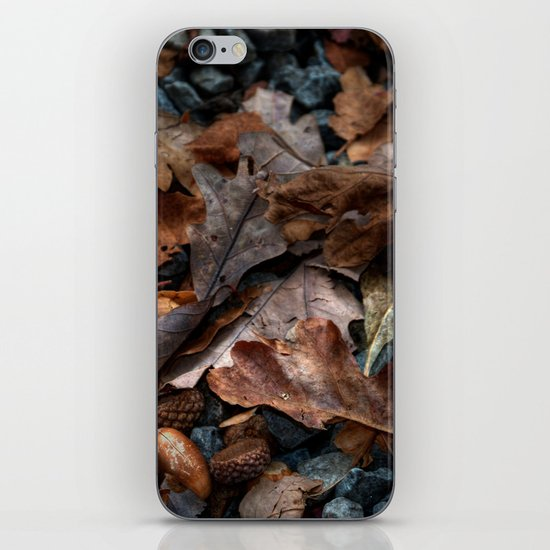 The Mighty Oak iPhone & iPod Skin