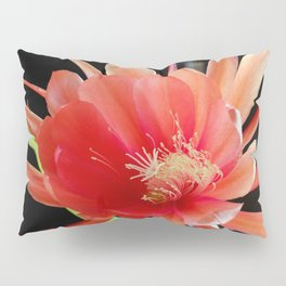 In The Jungle, The Mighty Jungle Pillow Sham