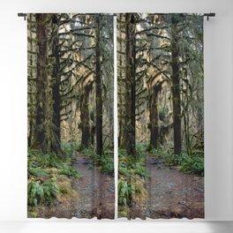 Rainforest Adventure II Blackout Curtain