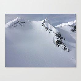 Heli View Canvas Print