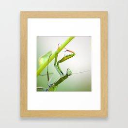 La Dame Verte Framed Art Print