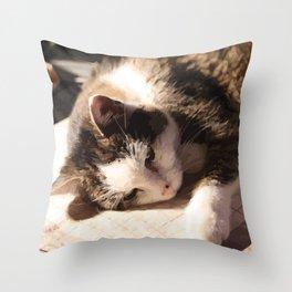 Sleeping Cat Illustration Throw Pillow