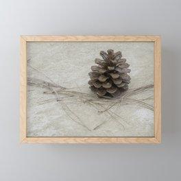 Pine Cone 2 Framed Mini Art Print