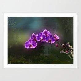 The Orchids of Akaka Falls Art Print