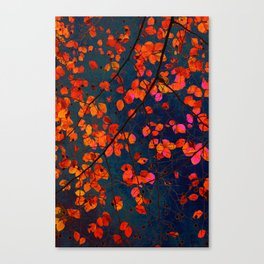 furious red leaves Canvas Print