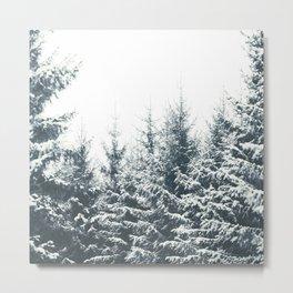 In Winter Metal Print