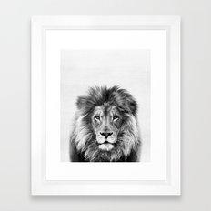 Lion Peekaboo print Framed Art Print