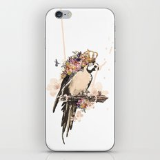 Pearly Parrot  iPhone & iPod Skin