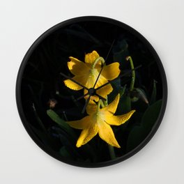 Dew drops on Yellow Glacier Lilies in Glacier National Park Montana Early Morning Wall Clock
