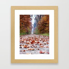 Walking In An Autumn Wonderland Framed Art Print