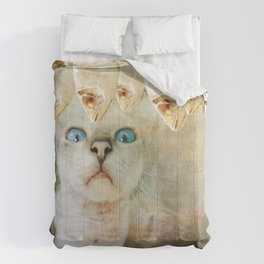 Hungry cat Comforters