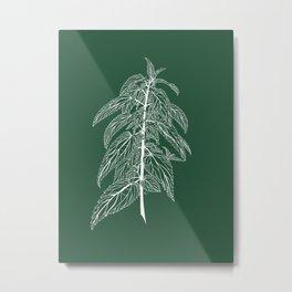 Stinging Nettle Metal Print