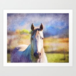 Colorful Horse Art Print