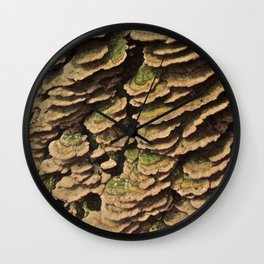 shelf fungus Wall Clock