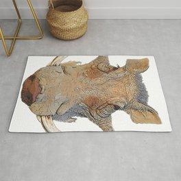 Warthog Phacochoerus Face Mammal Horrid Crushed Doormat Texture Rug