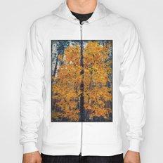 amazing autumn Hoody