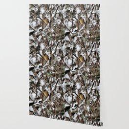 Friendly Freezing Wallpaper