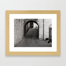 THE OLD WOMAN AND THE NOUN Framed Art Print