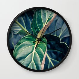 Mesmerized by Leaves Wall Clock