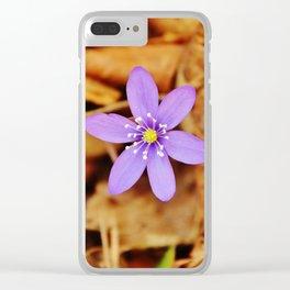 Liverwort flower Clear iPhone Case