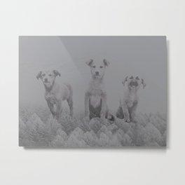 Mountain Dogs Metal Print