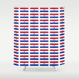 flag of paraguay 2 -paraguyan,asuncion,spanish, south america, latin america,pan flute,coffee,forest Shower Curtain