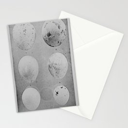 Vintage Photo Print - Nests and Eggs of Australian Birds (1889) - Eagle, Hawk and Harrier Eggs Stationery Cards