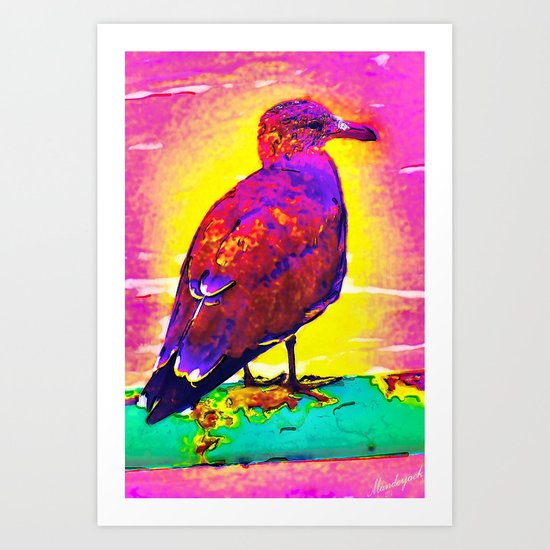 Pacific Beach Seagull Art Print