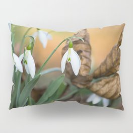 Opposites new and old in the garden Pillow Sham