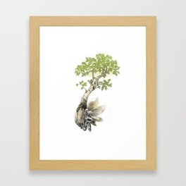 Birch Tree and Howlite Crystals Framed Art Print