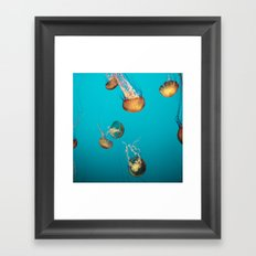 Magical Medusas Framed Art Print