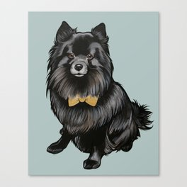 Ozzy the Pomeranian Mix Canvas Print