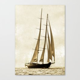 beauty is sailing Canvas Print
