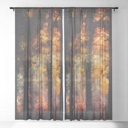 Glowing Dreams Sheer Curtain